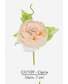Composizione rosa inglese con foglie diametro 7 cm colore cipria con stelo modellabile in fil di ferro ricoperto.